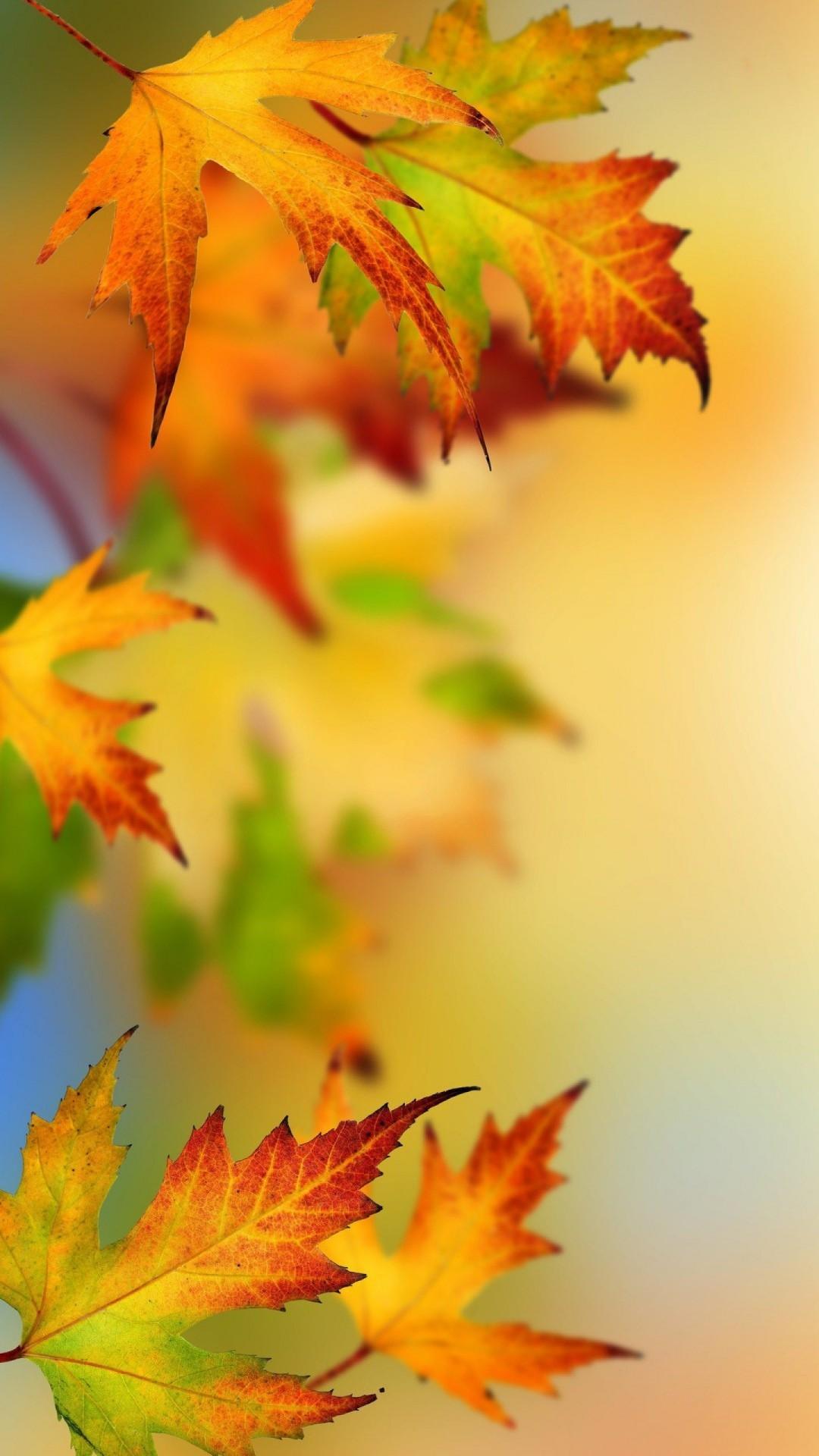 autumn wallpaper iphone