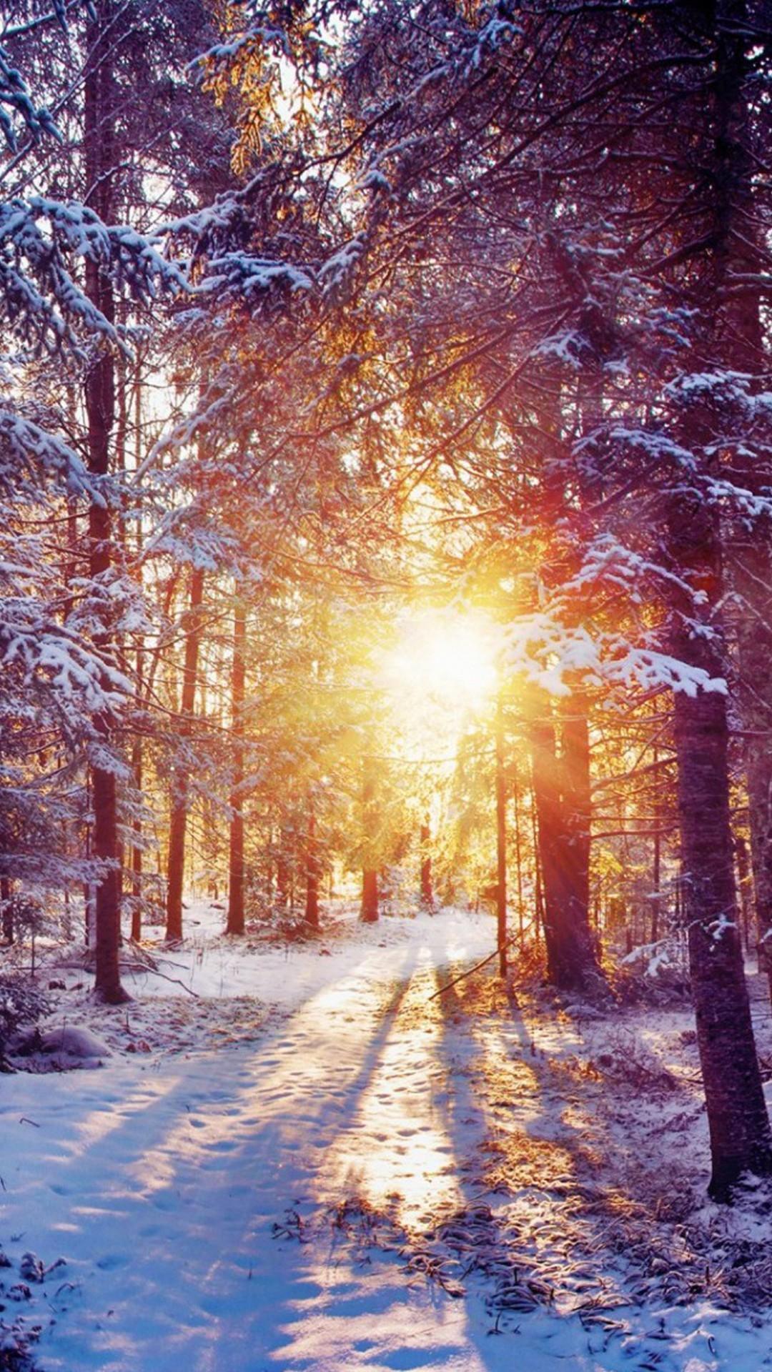 Winter hd wallpapers for iphone 7 wallpapers pictures for Imagenes bonitas para fondo de pantalla