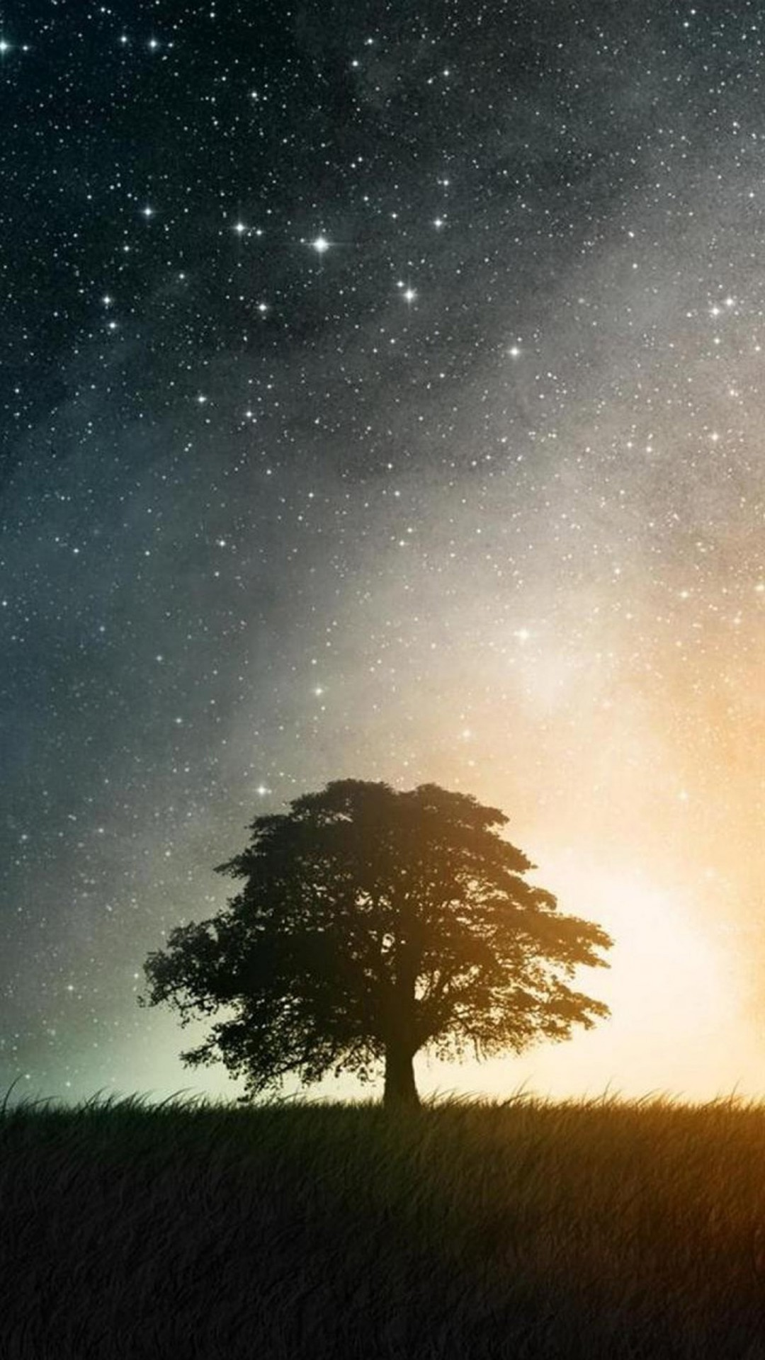 Download Wallpaper Night Iphone 7 - the-tree-in-the-field-at-the-night-wallpaper-background-1080x1920  Picture-63874.jpg
