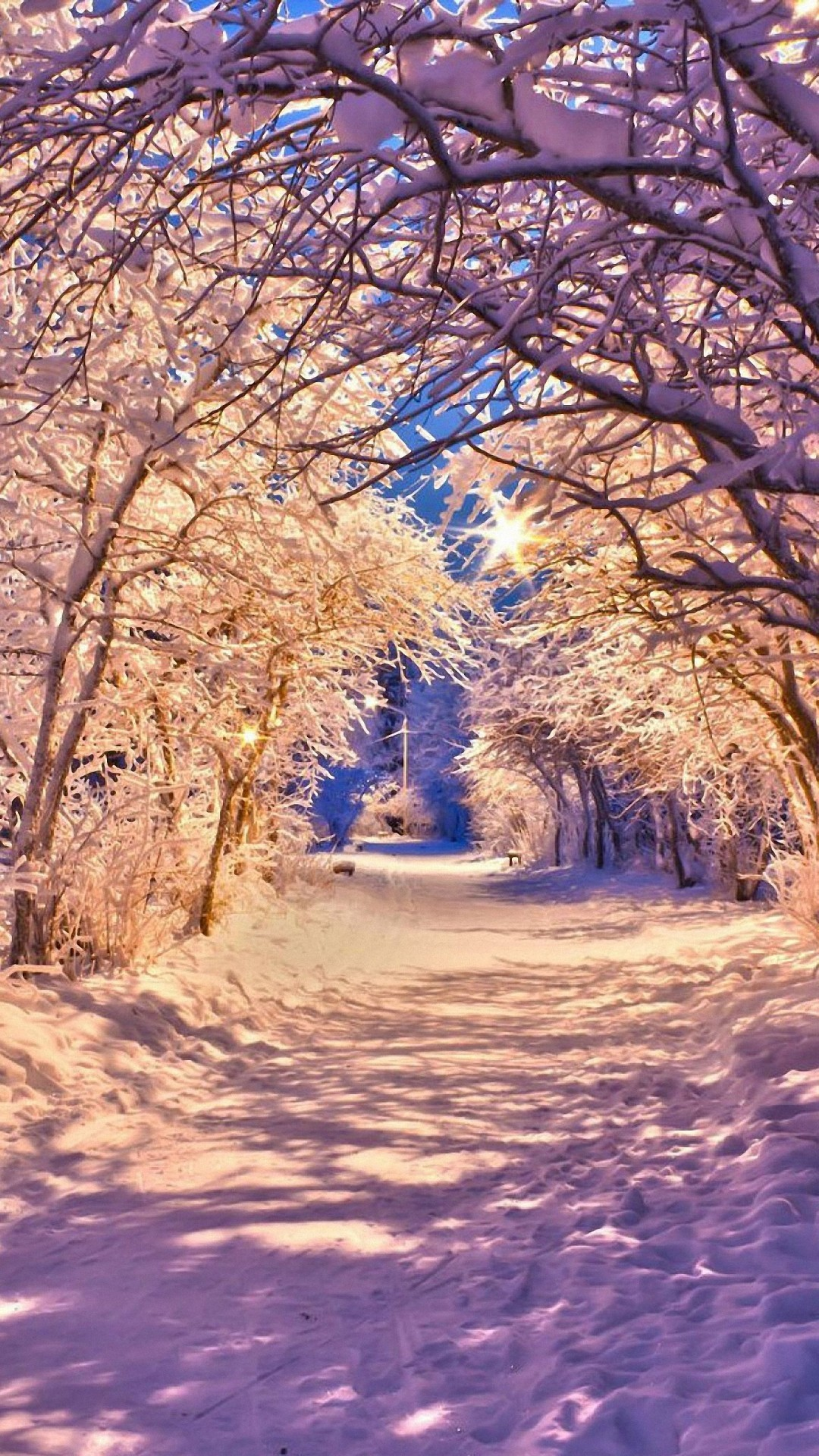 Seasons hd wallpapers for iphone 7 wallpapers pictures - Season wallpaper ...